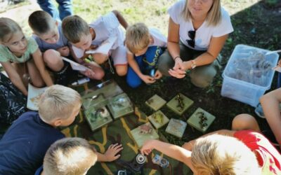 """Ljetni sportski kampovi """"Svaki tjedan sport jedan"""" – odlična zabava za djecu tijekom ljeta"""